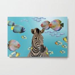 Tropic Fishes with wild Zebra Metal Print