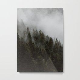 Evergreen Mountain Pines in the Fog Metal Print