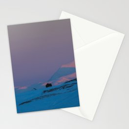 Musk Ox sunset Stationery Cards