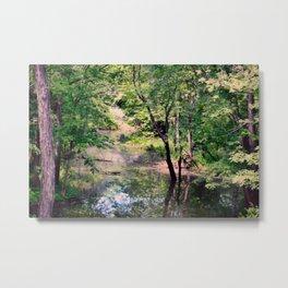 Hidden Oak Creek Metal Print