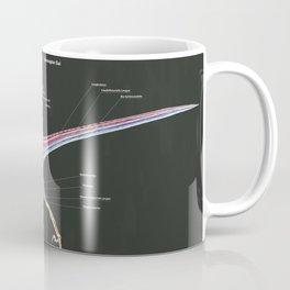 Microraptor Gui Muscle Study Coffee Mug