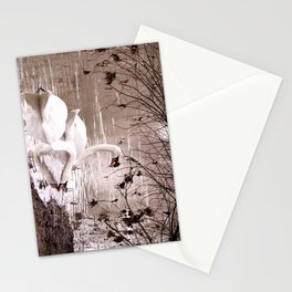 Swans friendship Stationery Cards