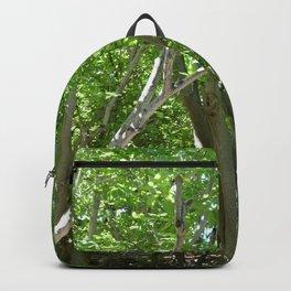 #14 Backpack