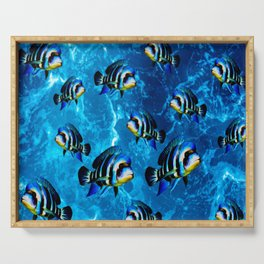Frontosa Cichlid School Aquarium Fish Keeping  Serving Tray