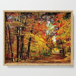 usa wisconsin wood autumn trees leaf fall brightly expensive Serving Tray