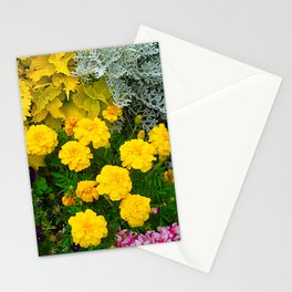 Colorful Flowers Hidden in Hawaiian Rainforest Stationery Cards