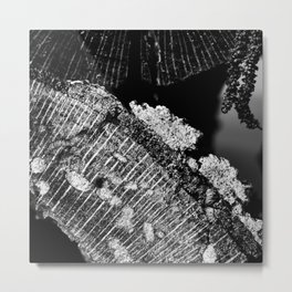Cross-Section of Wood and Moss Metal Print