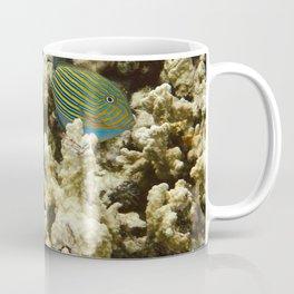Pacific Ocean Corals in Micronesia Coffee Mug