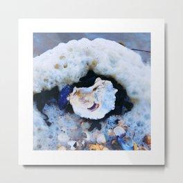 Shell & foam Metal Print