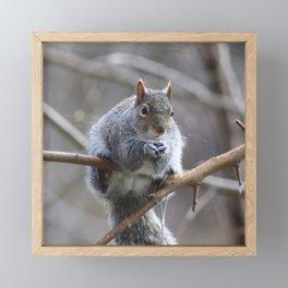 friend. Framed Mini Art Print