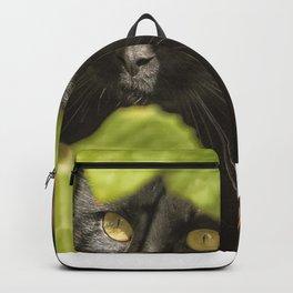 Brita's Cat Backpack