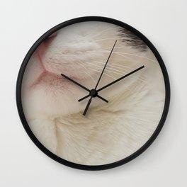 Black Nose Kitten Wall Clock