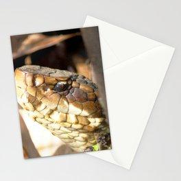 Watercolor Snake, Water Moccasin 02, Merchants Millpond, North Carolina Stationery Cards