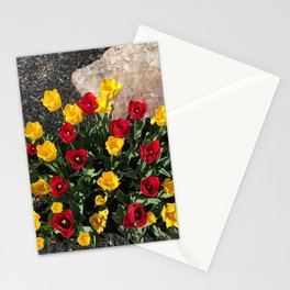 Red and yellow tulips Stationery Cards