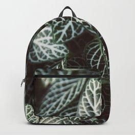 Striped Foliage Backpack