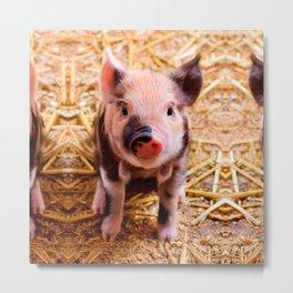Cute Baby Piglet Farm Animals Babies Metal Print