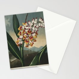 Henderson, Peter C. (d.1829) - The Temple of Flora 1807 - Nodding Renealmia Stationery Cards