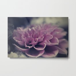 flower close up - seven Metal Print