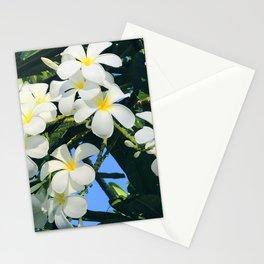 Hawaiian Tropical Plumeria Flowers With Peep of Sky Stationery Cards