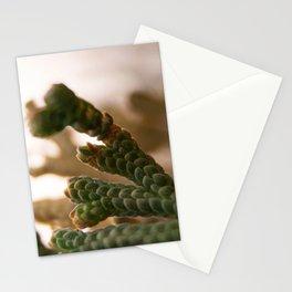 Resurrection moss Stationery Cards