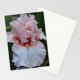 Flawless Stationery Cards