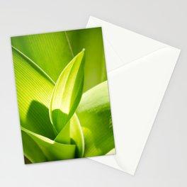 Twirl Stationery Cards