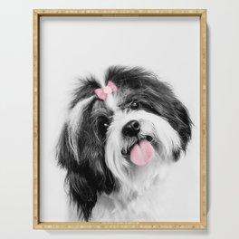 Dog print, Shih Tzu Print Serving Tray