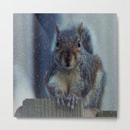 Christmas squirrel Metal Print