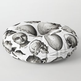 Ratio of Lobes Responsible for the Psychological Type of Person (Phrenology) Floor Pillow