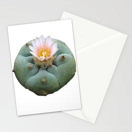 "Lophophora ""Peyote"" Williamsii Stationery Cards"