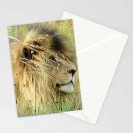 Leo Panthera African lion Stationery Cards