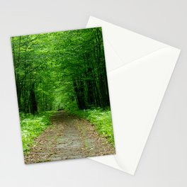 Forest path on spring in Europe, green tunnel of trees, still place on nature without people Stationery Cards