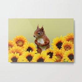 Squirrel in Sunflower Blossoms Field Metal Print