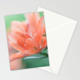 Lilies - Flower Photography Stationery Cards