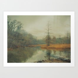 Winter Fog on Theodore Roosevelt Island Art Print