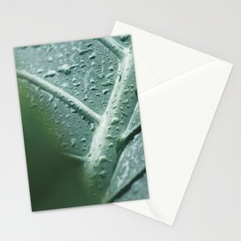 Leaf still life, fine art, high quality, macro photography, nature photo Stationery Cards