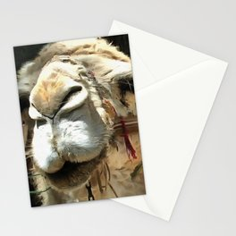Haughty Camel Stationery Cards