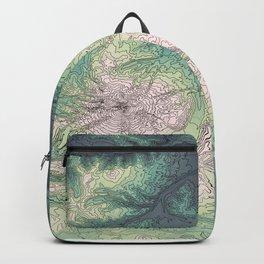 Mount Hood, Oregon Topographic Contour Map Backpack