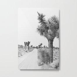 Joshua Tree Path - Black and White Landscape Photography Metal Print