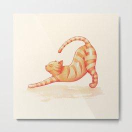 Yoga Cat Metal Print