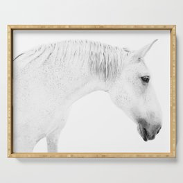 Horse Photography   White Horse Serving Tray