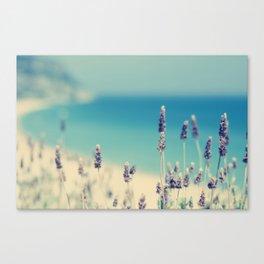 beach - lavender blues Canvas Print