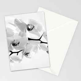 Sunhine Orchid Flower in White Stationery Cards