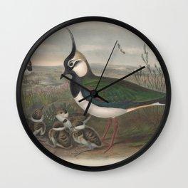 033 Peewit or Lapwing vanellus cristatus4 Wall Clock