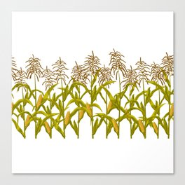 Corn maize pattern Canvas Print