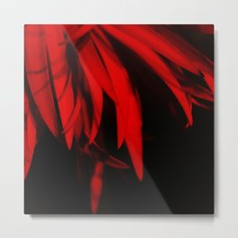 Mysterious Red Feathers on Black Background #decor #society6 #buyart Metal Print