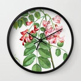 Robinia rosea (Robinier rose) from Traite des Arbres et Arbustes que lon cultive en France en pleine Wall Clock