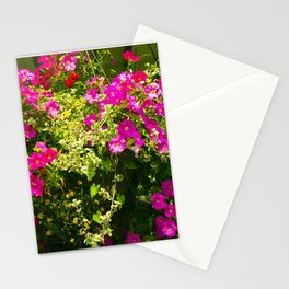Pink Flowers and Green Leaves in Afternoon Sunlight Stationery Cards