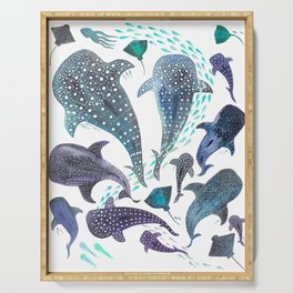 Whale Shark, Ray & Sea Creature Play Print Serving Tray