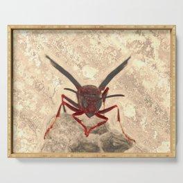 Wasp #2 aged paintbrush Serving Tray
